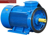 Twin Rotary Screw Air Compressor Motor