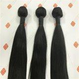 ブラジルの人間の毛髪のバージンの毛は束のインド人の毛を編む
