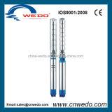 8sp95-6 Pomp de Met duikvermogen van het Water van het roestvrij staal