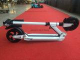 Touristisches Miete-Geschäfts-beste Wahl, die elektrischen Roller 250W faltet
