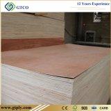 muebles de 16m m 18m m Bintangor y madera contrachapada del embalaje para la venta