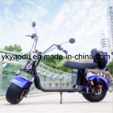 الصين مصنع بيع بالجملة بالغ [شنس] كهربائيّة [هرلي] درّاجة ناريّة إشارات