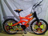 販売のパキスタンの熱いティーネージャーは自転車に乗るBMXの自転車(FP-KDB-17028)を