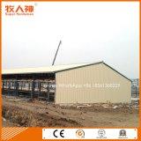 주거 장비를 가진 공장에서 강철 구조물 닭장 건축