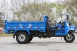 Waw Chinese Diesel Dump Three Wheel Truck à vendre