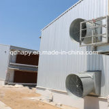 Steel superiore Structure Poultry House e Poultry Farm