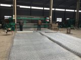 Pesante galvanizzato con più dei materassi di Gabion della galvanostegia 250G/M2