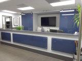 Vidro decorativo pintado para escritório e decoração de lobby