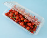 Blister Embalagem Descartável Limpar Pet Plastic Food Container Storage with Lid