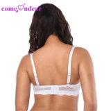 En Stock blanco de encaje de alta calidad Cómoda camiseta Bra