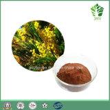 Extracto natural de Catechu del acacia del 100% Cianidanol 40%-98%/extracto de Catechu