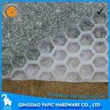 Panneau en nid d'abeille / planche en nid d'abeille en plastique