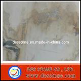 Azulejo de mármol Polished del mármol fascinador del paisaje (DES-MT010)