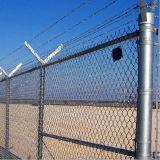 Maillon de chaîne enduit du maillon de chaîne Fencing/PVC clôturant/clôture au sol de maillon chaîne de jeu