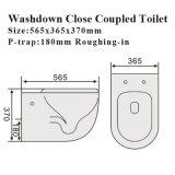 6005 Australisch StandaardWashdown van het Watermerk van de Waren van de Badkamers Sanitair Ceramisch Toilet