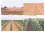 De Bio Organische Meststof van Unigrow voor Om het even welk Gewas, Fruit, het Plantaardige Planten