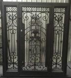 Двери двойного входа ковки чугуна матированного стекла с двойными Sidelights