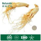 Het Uittreksel van de Wortel van het Blad van de Ginsengen van Naturalin met Ginsenosides Polysacchariden Ekstrak