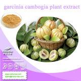 Nutramax- Natural 100% Garcinia Cambogia Extract (кислота 50%-60% Hydroxy лимонная)