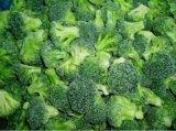 Melhor marca e congelados saudáveis brócolos