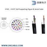 커뮤니케이션 전화망 케이블 Hyac Hyatc 자활하는 숫자 8 공중 케이블