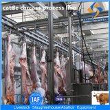 Bestiame Abattoir Equipment con Flexible Capacity