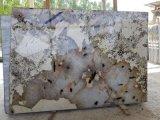 La Patagonia cuarcitas baldosas pulidas losas&+encimera