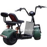 Leistungsfähiges Grün Electric Motorrad mit 01 - 60V 2000watt schwanzloser Motor