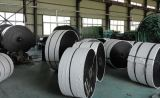 Bord moulé en caoutchouc en nylon Rolls de la bande de conveyeur (NN100, MPA 10)
