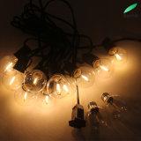 indicatore luminoso impermeabile della stringa della lampadina del filamento di 5.5m 10bulbs G40 LED per esterno