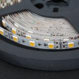 Lumière de bandes flexible de la couleur SMD5050 DEL du l'Élevé-Éclat W/R/G/B/RGB pour la décoration d'hôtel/marché/construction