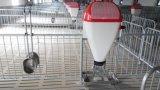 Клеть свиньи оборудования свиньи для горячего сбывания в 2017
