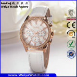Relógio de pulso das senhoras de quartzo da cinta de couro da forma de OEM/ODM (Wy-099A)