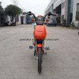 Rad-elektrischer Fahrrad-Roller Cer-CERT-zwei