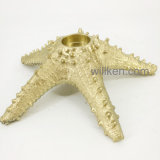 Le mini stelle marine della resina di arte su ordinazione del mare si dirigono la decorazione