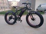 LG Lithium Battery를 가진 싼 중국 사람 48V 750W 26*4.0 Inch Fat Tire Electric Snow Bike