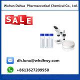 熱い販売の栄養物の補足-クレアチンモノラル200mesh (98%分)