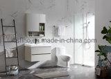 Todas as modernas casas de banho de alumínio a venda directa de Fábrica do gabinete
