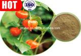 Het Product Withanolides van de Gezondheid van mensen 1%~5% Uittreksel van de Wortel Ashwagandha