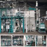 Máquina da fábrica de moagem do milho do moinho de farinha do milho de 30 T/D