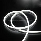 새로운 LED 코드 네온 등 크리스마스 LED 네온 유연한 지구 빛