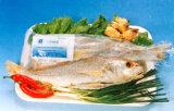 Getrocknete Nahrung - gelber Quakfisch