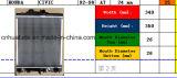 Voiture & Auto du radiateur Radiateur (zkj 21460-4m400)