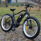 세륨을%s 가진 350W 가장 새로운 뚱뚱한 타이어 전기 자전거