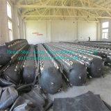 Opblaasbare RubberBallon voor het Project van de Duiker in Kenia