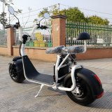 off-Road 뚱뚱한 타이어 전기 기동성 스쿠터 1000W 60V Harley