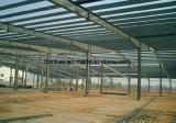 Vertientes de acero del metal del almacén y del taller para la venta