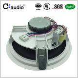 6.5 Zoll-Heimkino-Lautsprecher mit Papierkegel für PA