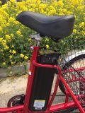 Anciano de tres ruedas que monta el cargo trasero Trike eléctrico de la cesta