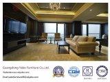 Het moderne VijfsterrendieMeubilair van het Hotel voor WoonZaal (yB-New1) wordt geplaatst